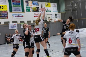 130119-fhc-vs-bad-wildungen-IMG 0213